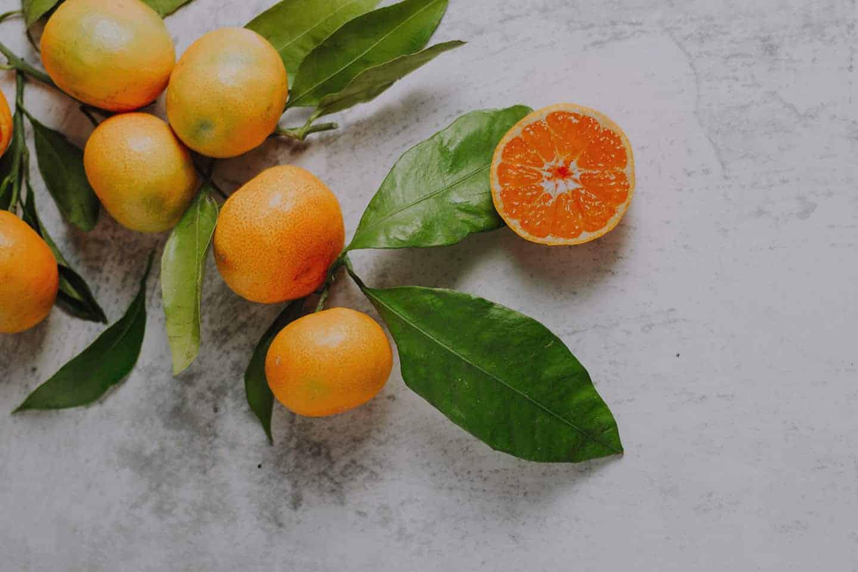 vitamines-vivre-vegane-au-quebec2