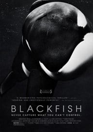 films-veganes-Blackfish (L'orque tueuse)