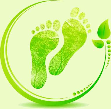 logo-earthing-vitalite